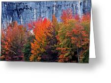 Fall At Steele Creek Greeting Card
