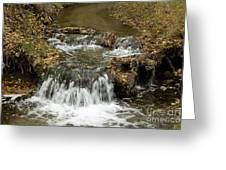 Fall At The Lower Falls Greeting Card