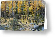 Fall At The River Greeting Card