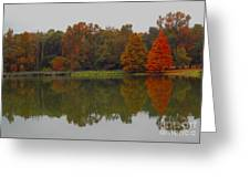 Fall At Tom Brown Park Greeting Card