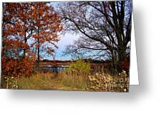Fall At West Park Pond Greeting Card