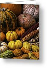 Fall Autumn Abundance Greeting Card