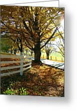 Fall Back Roads Greeting Card