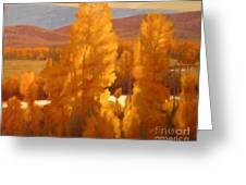 Fall Backlight Greeting Card by Doyle Shaw