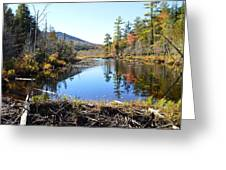 Fall Beaver Dam Greeting Card