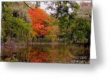 Fall In The Park Greeting Card