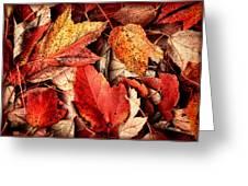 Fall Carpet Greeting Card