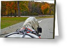 Fall Carriage Ride Greeting Card