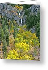 Fall Color And Waterfalls In Provo Canyon Utah Greeting Card
