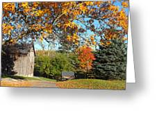 Fall Color Greeting Card