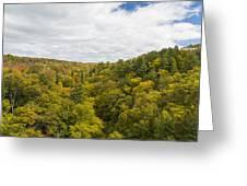 Fall Color Hills Mi 1 Greeting Card