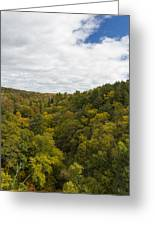 Fall Color Hills Mi 2 Greeting Card