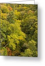 Fall Color Hills Mi 3 Greeting Card