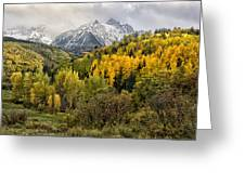 Fall Color In The Rockies Near Ouray Dsc07913 Greeting Card