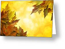 Fall Color Maple Leaves Background Border Greeting Card