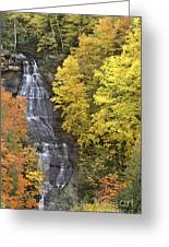 Fall Color Surrounds Chapel Falls On The Michigan Upper Peninsula Greeting Card
