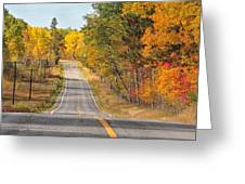 Fall Color Tour Mn Highway 1 2878 Greeting Card