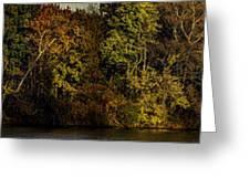 Fall Color Trees V7 Pano Greeting Card