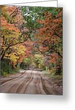 Fall Colors - 2 Greeting Card