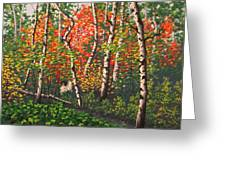 Fall Colors 4 Greeting Card
