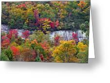 Fall Colors Along Tanasee Road Greeting Card