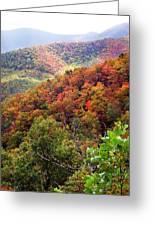 Fall Colors Along The Blueridge Greeting Card