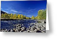 Fall Colors Along The Naches River Greeting Card