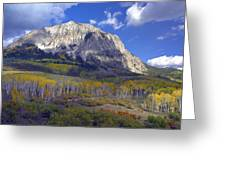 Fall Colors At Gunnison National Forest Greeting Card