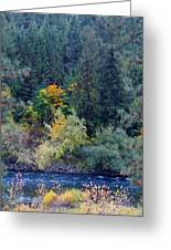 Fall Colors By The Spokane River Greeting Card