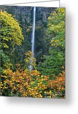 Fall Colors Frame Multnomah Falls Columbia River Gorge Oregon Greeting Card