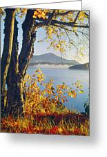 Fall Colors Frame Whiteface Mountain Greeting Card