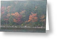 Fall Colors In Acadia National Park Maine Img 6483 Greeting Card