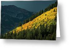 Fall Colors In Aspen Colorado Greeting Card