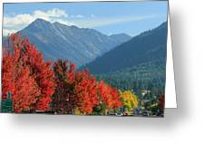 Fall Colors In Joseph Or Greeting Card