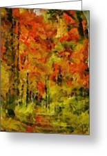 Fall Colors In Ohio Greeting Card