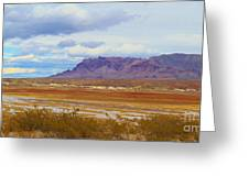 Fall Colors In The Lake Bed Greeting Card