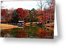 Fall Colors Greeting Card by Jinx Farmer