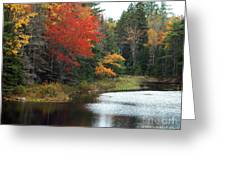 Fall Colors On A Lake Greeting Card