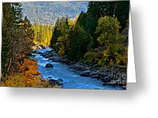 Fall Colors On The Wenatchee River Greeting Card