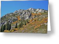 Fall Colors S Lake Tahoe California Greeting Card