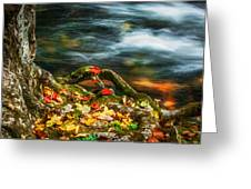 Fall Colors Stream Great Smoky Mountains Painted  Greeting Card