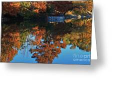 Fall Colors Water Reflection Greeting Card by Robert D  Brozek