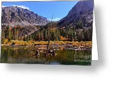 Fall Colours Reflection Greeting Card