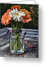 Fall Daisy Cheer Greeting Card
