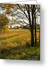 Fall Day In The Ozarks Greeting Card