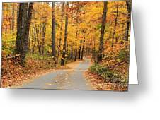 Fall Drive Greeting Card
