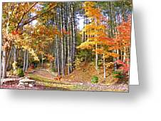 Fall Driveway And Coco The Dog Greeting Card