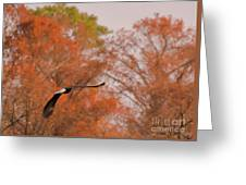 Fall Eagle Greeting Card