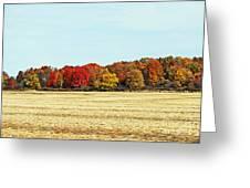 Fall Field Greeting Card