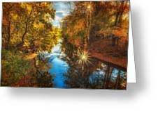 Fall Filtered Reflections Greeting Card by Sylvia J Zarco
